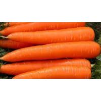 Морковь (за 1 кг)